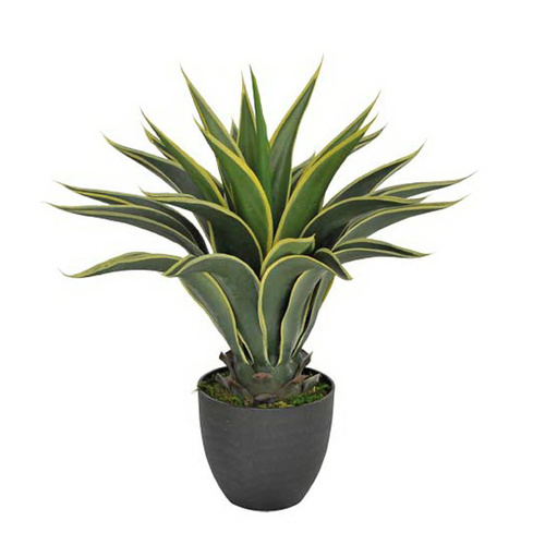 Artificial Agave in Decorative Pot - 60cm